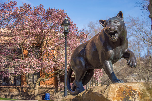 photo of panther statue